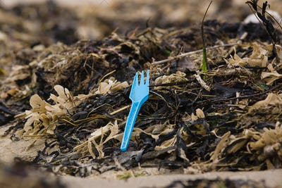 Plastic Garbage in the Environment