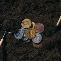 top view of arranged gardening tools and various bitcoins on ground