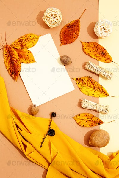 Fall Winter minimalist scene