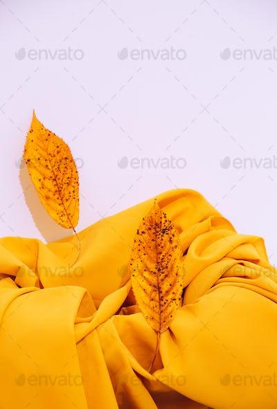 Fall Winter background Autumn leaf and yellow  textile. Seasonal stylish minimalist still life scene