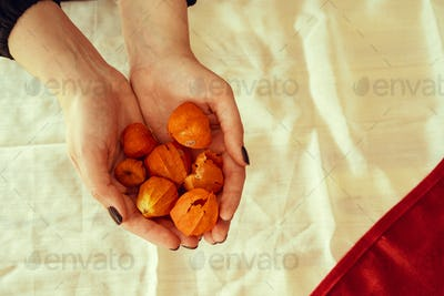 Handful of physalis fruit, view from above