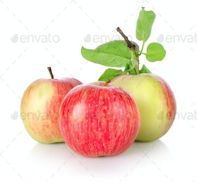 Three ripe apples isolated