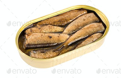 Sprat fish canned isolated