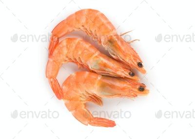 Prepared shrimp isolated