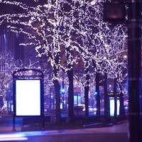 Holidays in Chicago