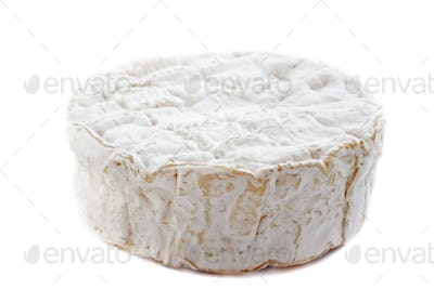 camember cheese