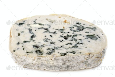Piece of blue cheese