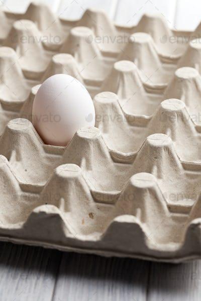 white egg in carton