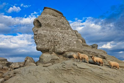 The Bucegi Sphinx , Romania