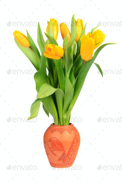 Yellow tulips in a clay pot