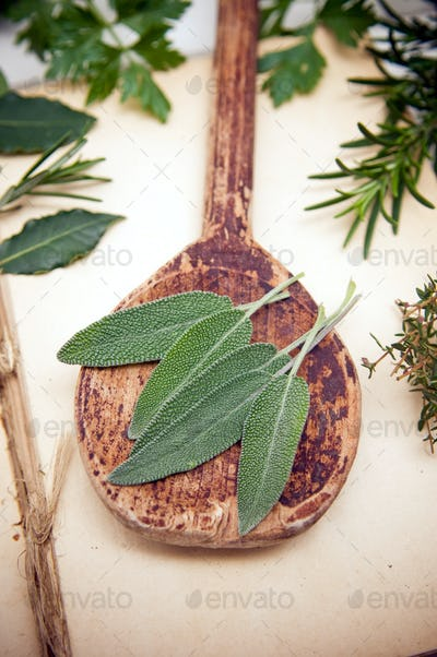 Fresh sage leaves