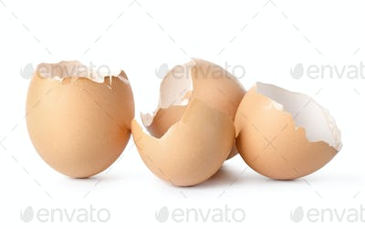 Empty eggs shell