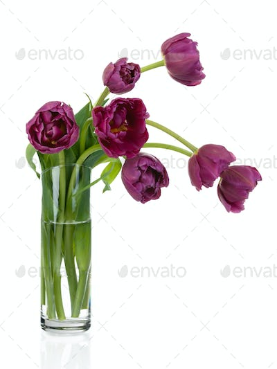 Tulips bouquet in glass vase full size