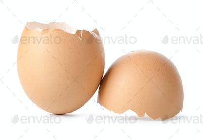 Empty brown egg shell