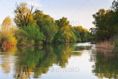 river channel in the Danube Delta