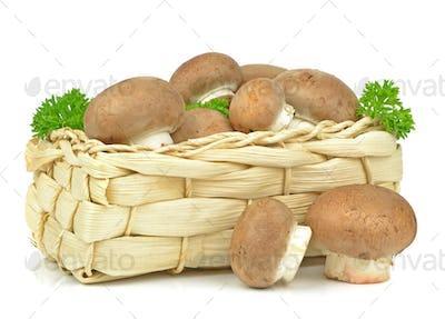 Brown Mushrooms in Basket