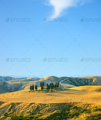 Tuscany, rural landscape. Cuntryside farm and cypress trees