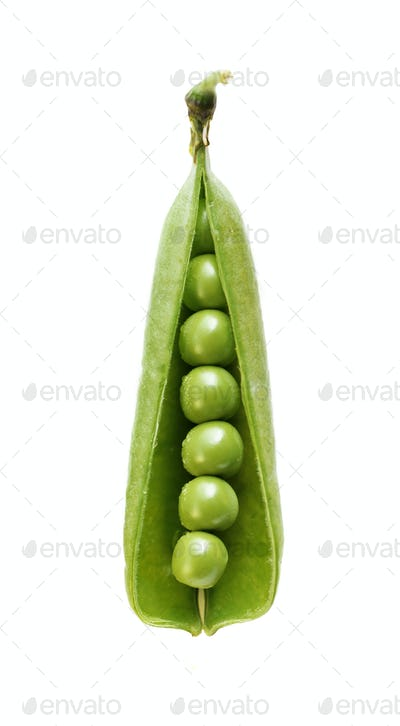 peas isolated on white