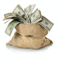 Money in the bag