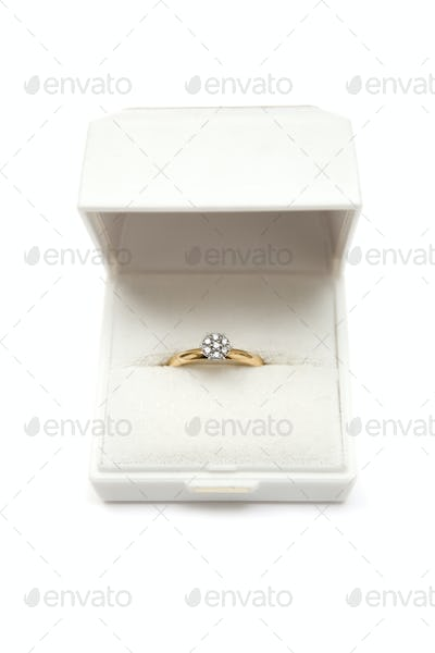 Precious Engagement Ring