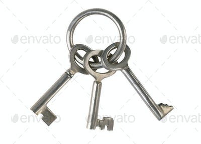 keys on a white background