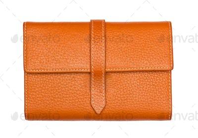 Big Brown purse