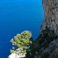 mountain slope into the sea