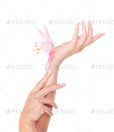 Female hands with lily flower