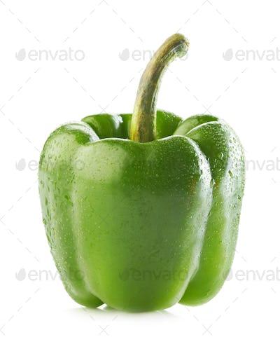 wet green paprika