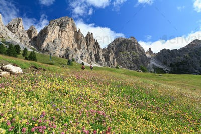 Dolomiti - hike in Gardena pass
