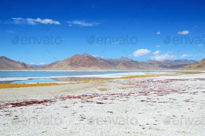 Salt lake in Ladakh
