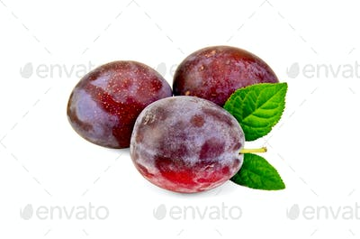 Plum red with leaves