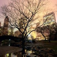Central Park and Manhattan skyline