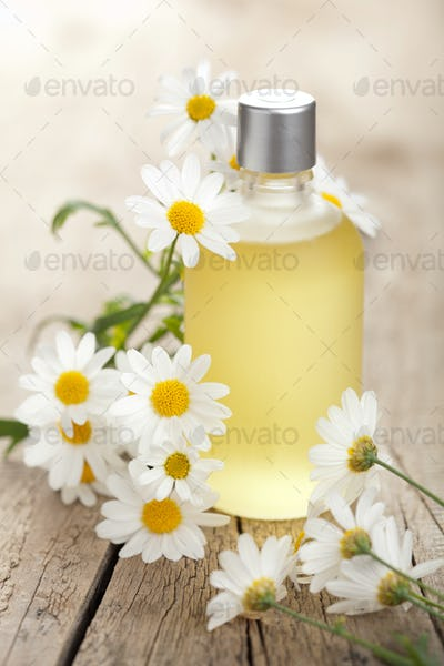 essential oil and camomile flowers