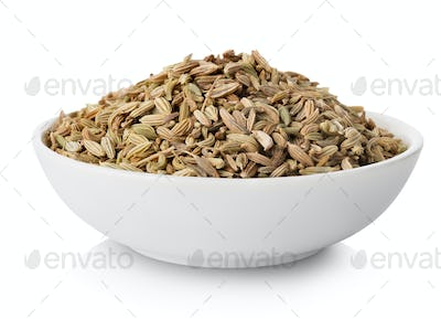 Fennel  in plate