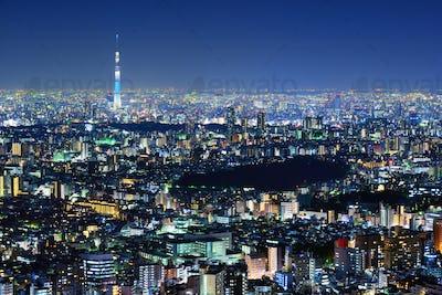 Tokyo Cityscape