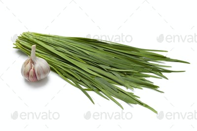 Chinese chives and garlic
