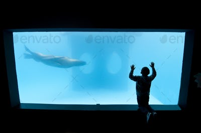 Child in a Public aquarium