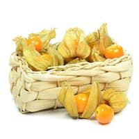 Physalis Fruit in a Basket