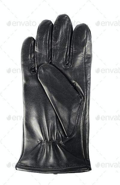 New glove