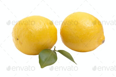 Two juicy lemons  on a white background.