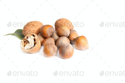 Tasty nuts on a white.