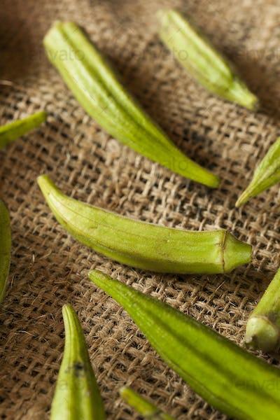 Organic Green Okra Vegetable