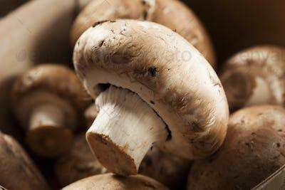 Organic Brown Baby Bella Mushrooms