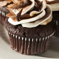 Homemade Chocolate Cupcake with chocolate frosting