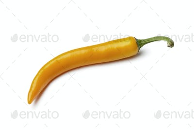 Orange chili pepper
