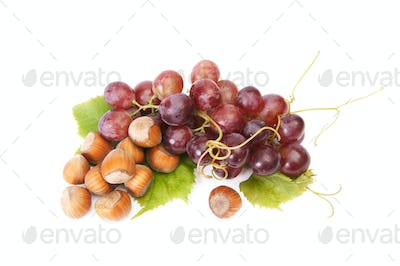 Ripe hazelnuts and  grape on a white.
