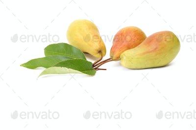Splendid,tasty pears on a white.