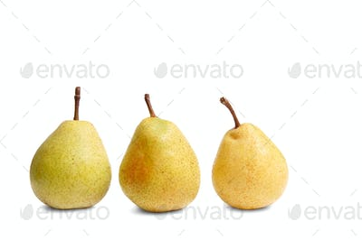 Ripe yellow pears on a white.