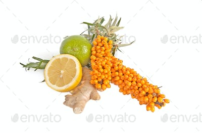 Sea-buchthorn,lemons and ginger.